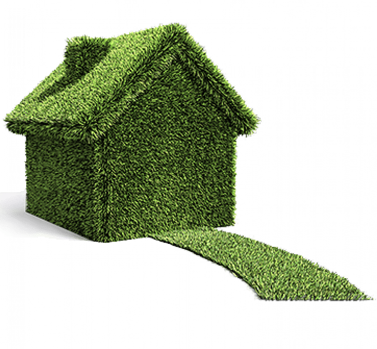 A home and sidewalk vector image covered in grass.